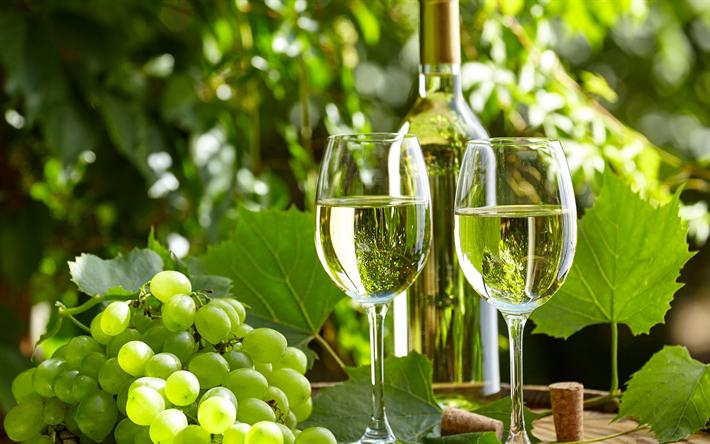 O que são vinhos verdes?