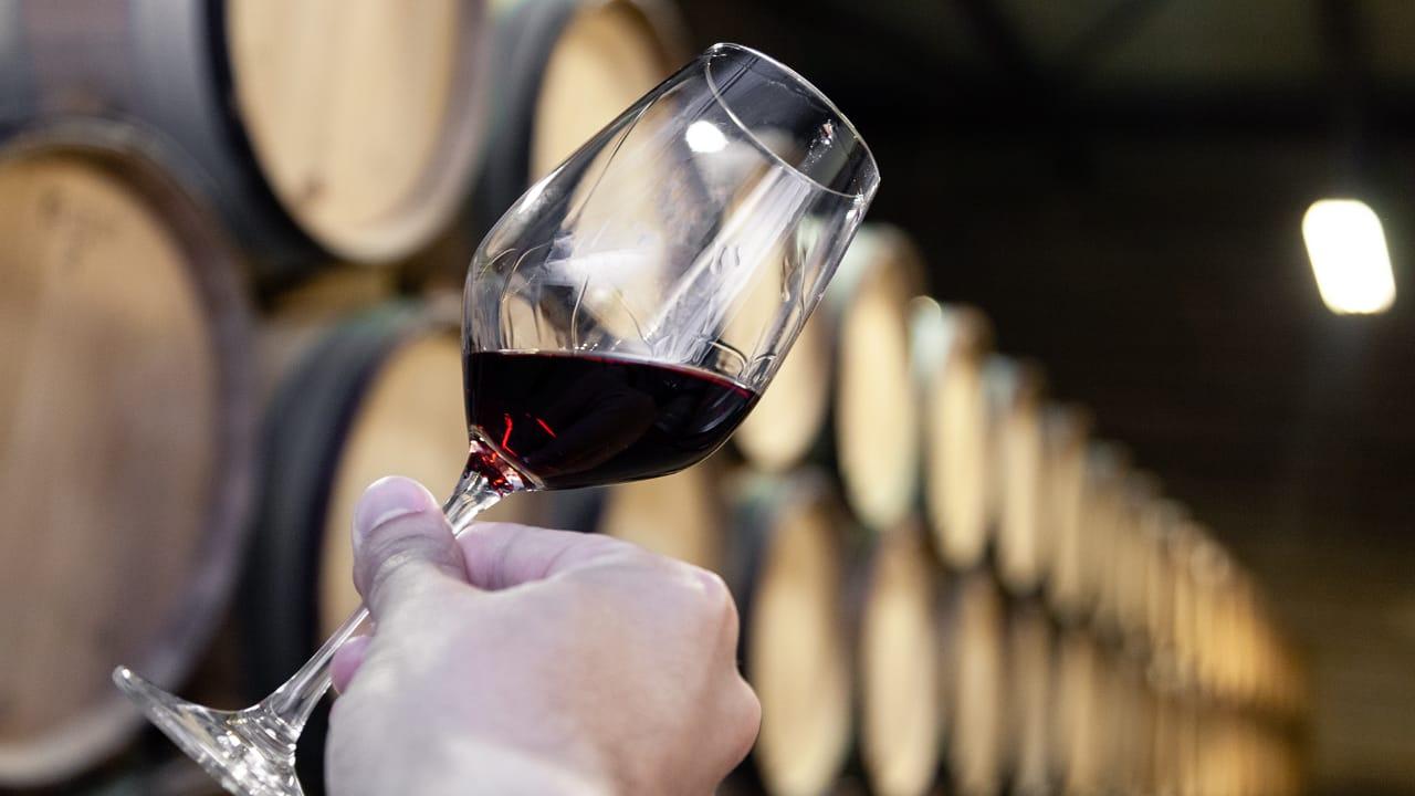 Cada Vinho na sua Taça