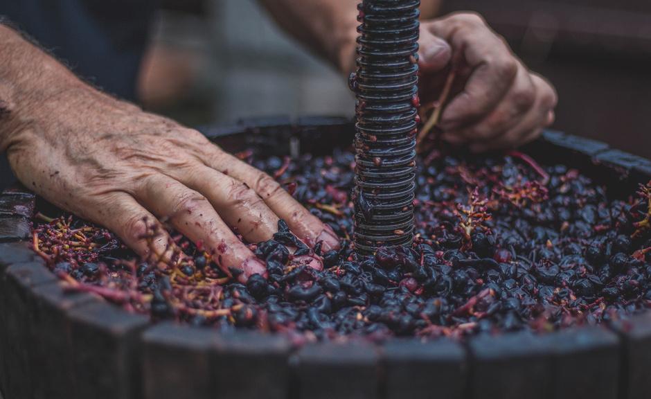 Como é Feito o Vinho?